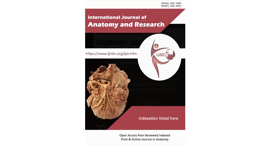 IJAR   Anatomy   International Journal of Anatomy and Research   Int